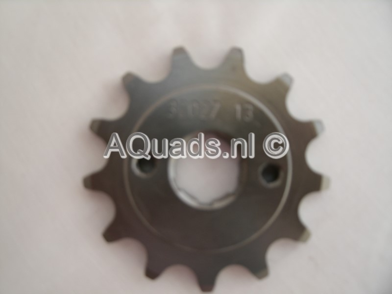 Sprocket 13 t Bashan 250-11b